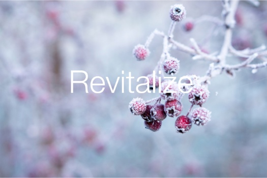 Revitalize-Winter-berries